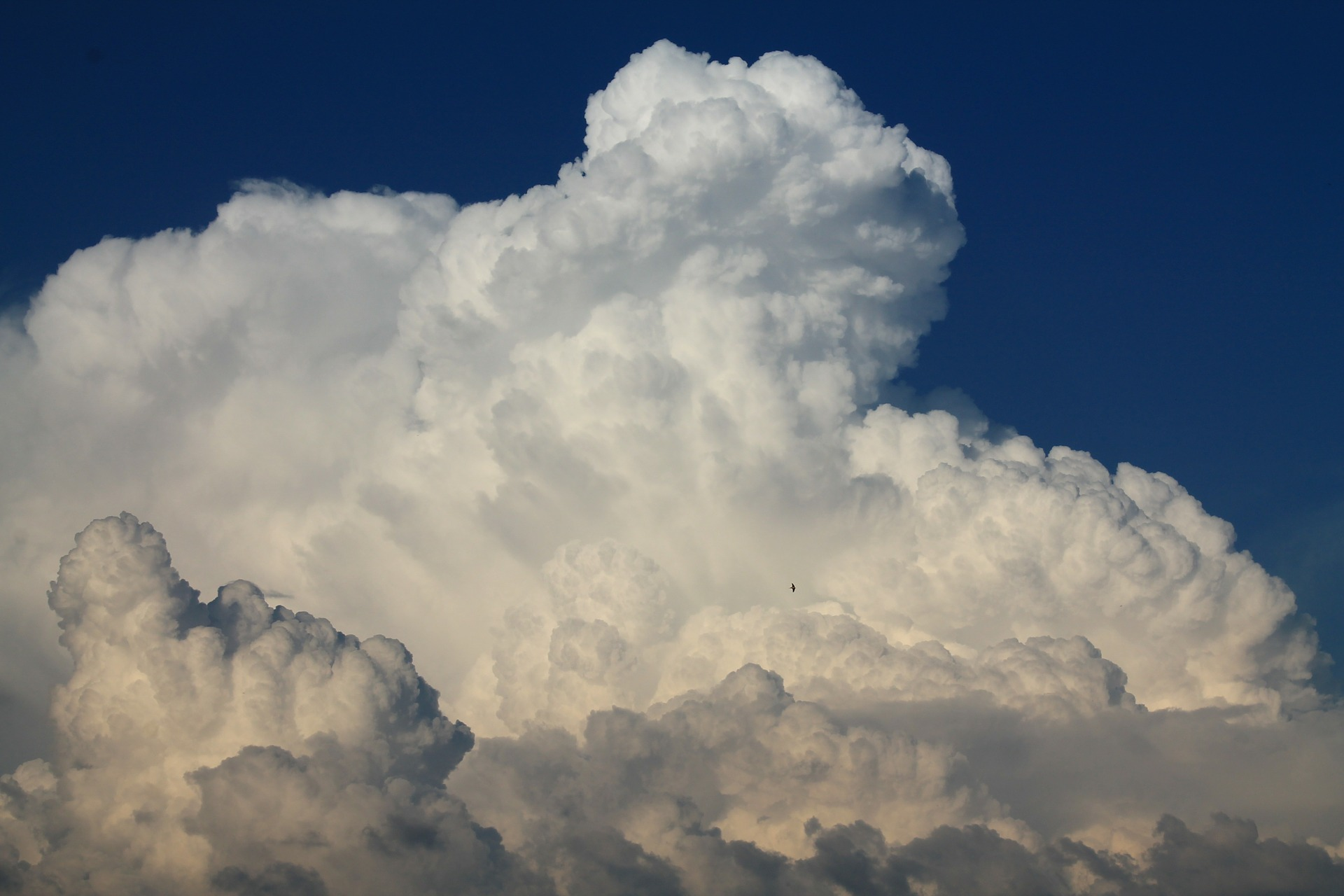 Demystifying the Cloud [INFOGRAPHIC]